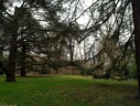 Orsay fevrier 2011-40