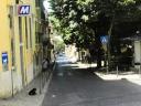 Lisbonne-aout 2013-125